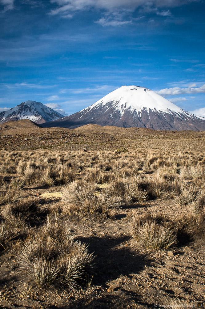 Volcan et pampa