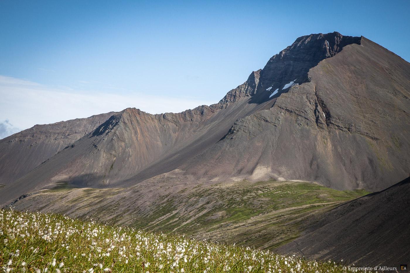 Volcan & linaigrettes