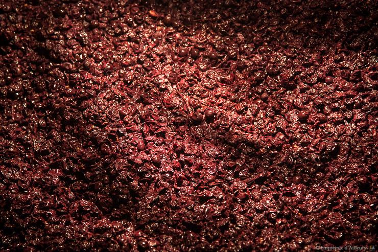 Raisins en fermentation