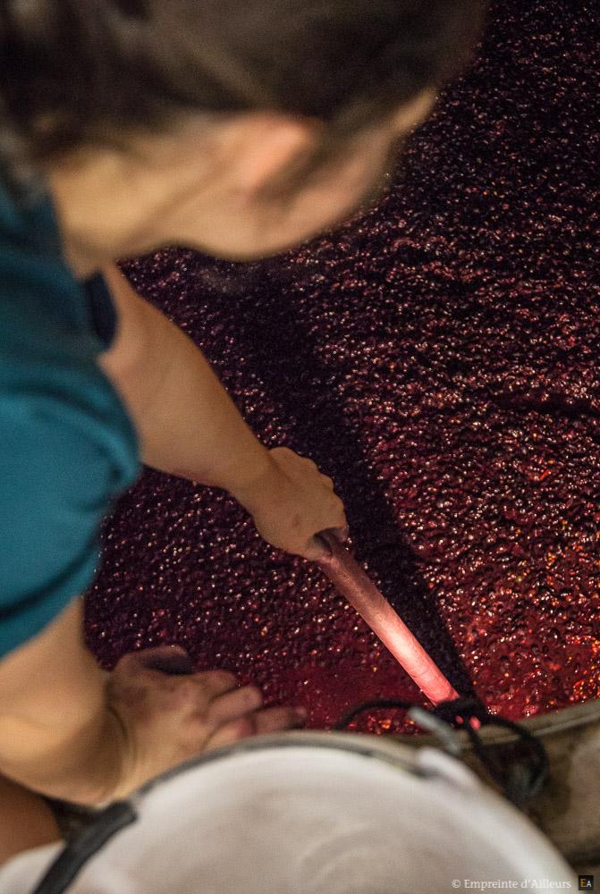 Cuve de fermentation du vin