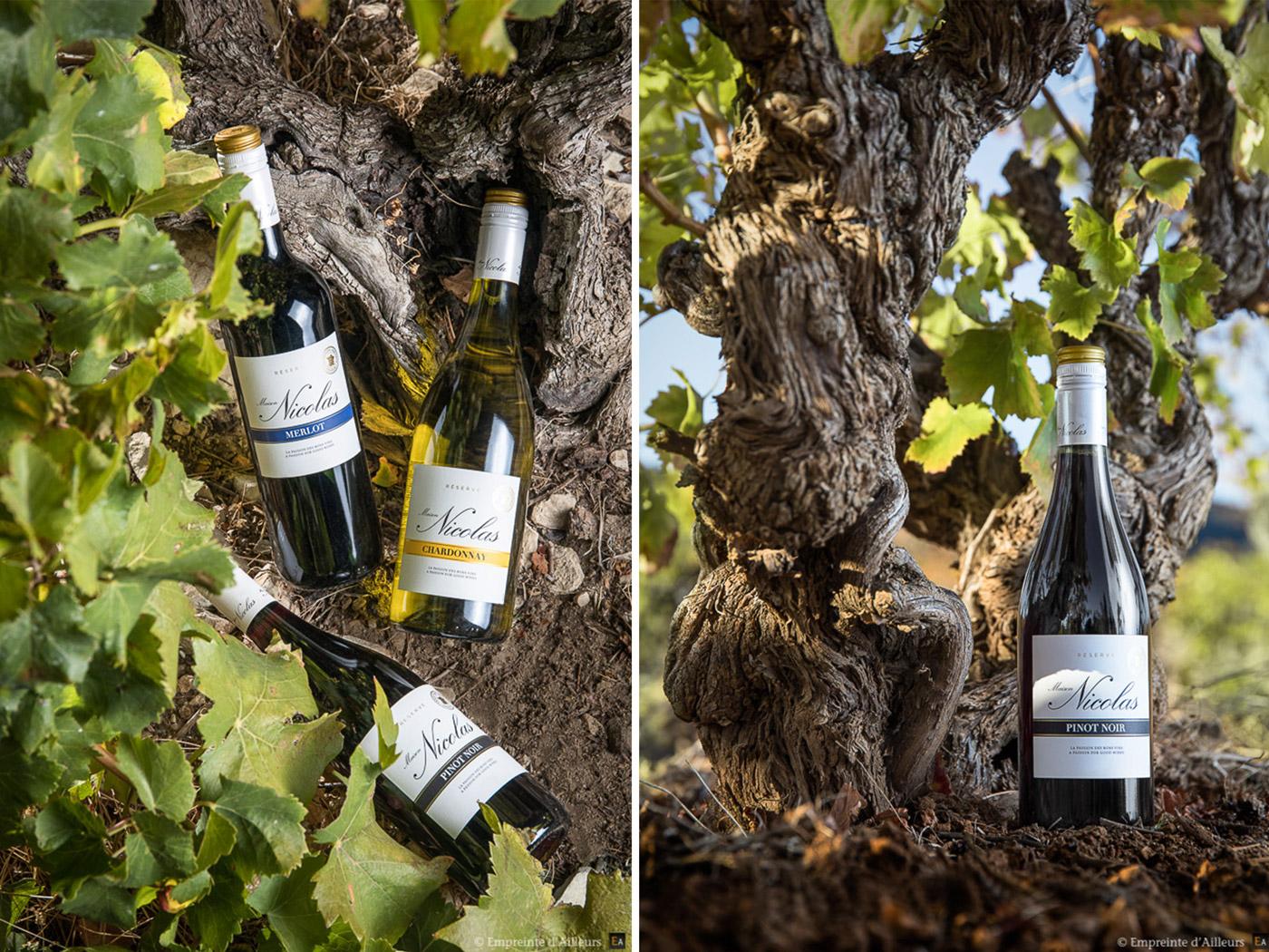 Bouteille de vin et cep de vigne