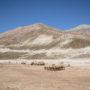 Eleveur nomade Bakhtiari